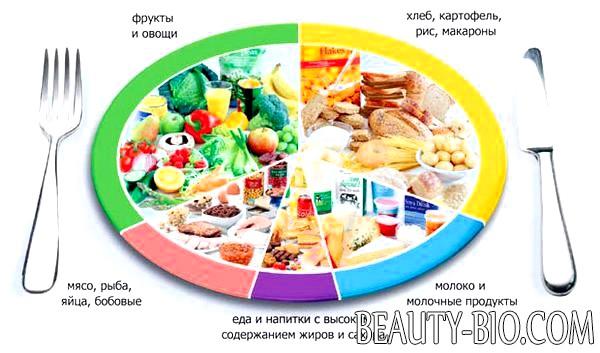 питание через 2 часа для похудения